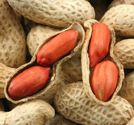 Фото - Полезные свойства арахиса