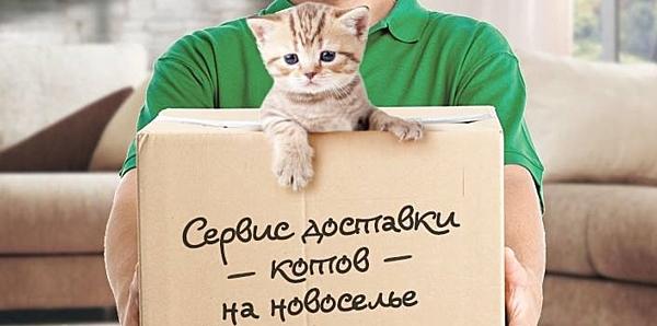 Фото - Что дарят на новоселье друзья? Хочу заказать подарок
