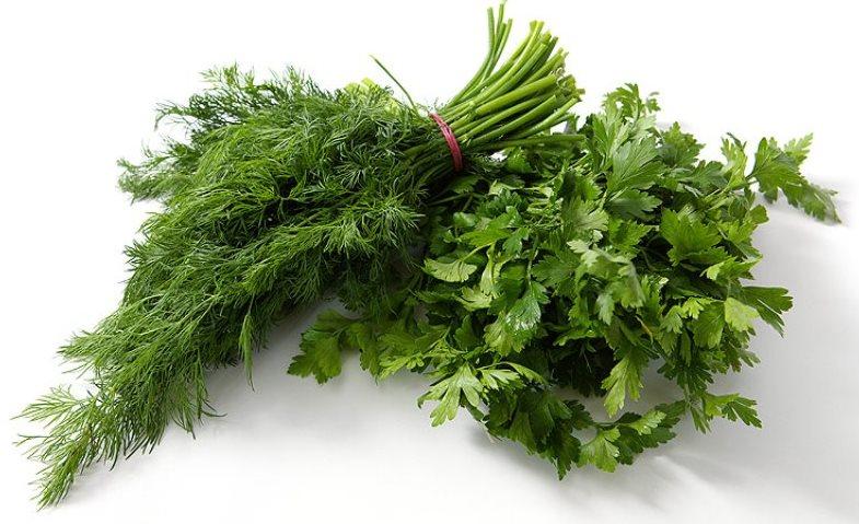 Фото зелени для похудения