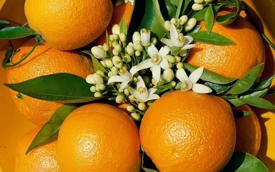 """Фото - Апельсинофобия или """"Мы против целлюлита"""""""