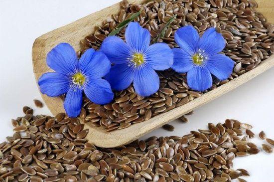 Фото - Очищение семенами льна: лёгкость послевкусия