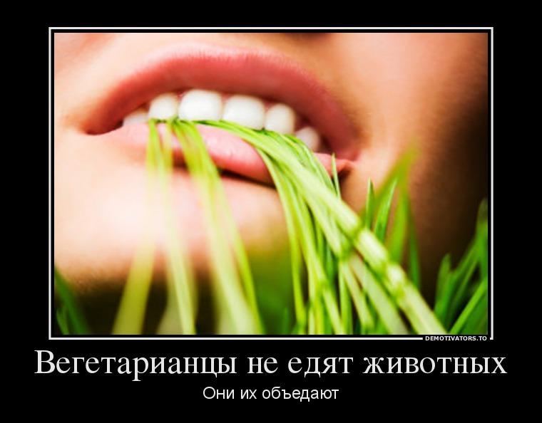 Создания, вегетарианцы веганы смешные картинки