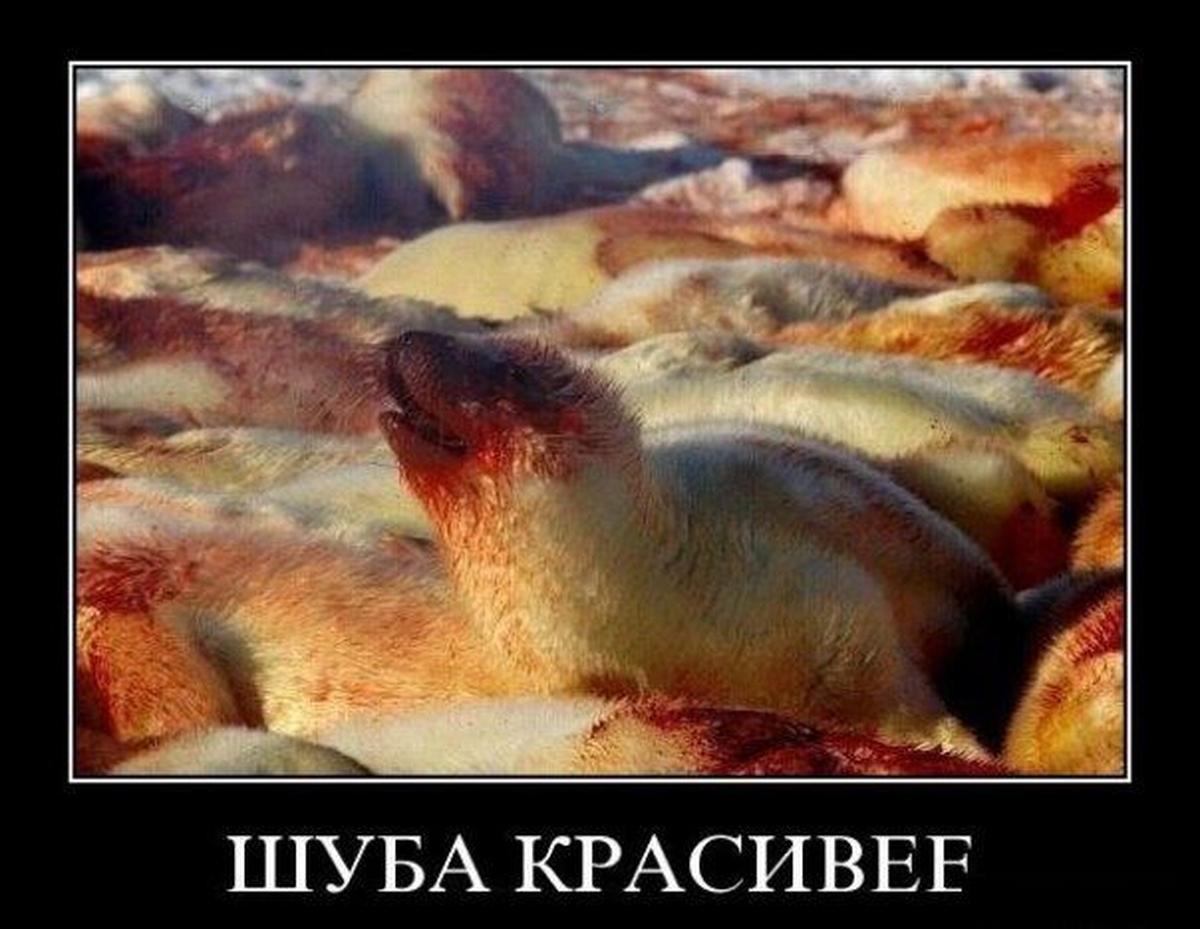 trahalsya-saune-molit-o-poshade-smotret-onlayn-krupno