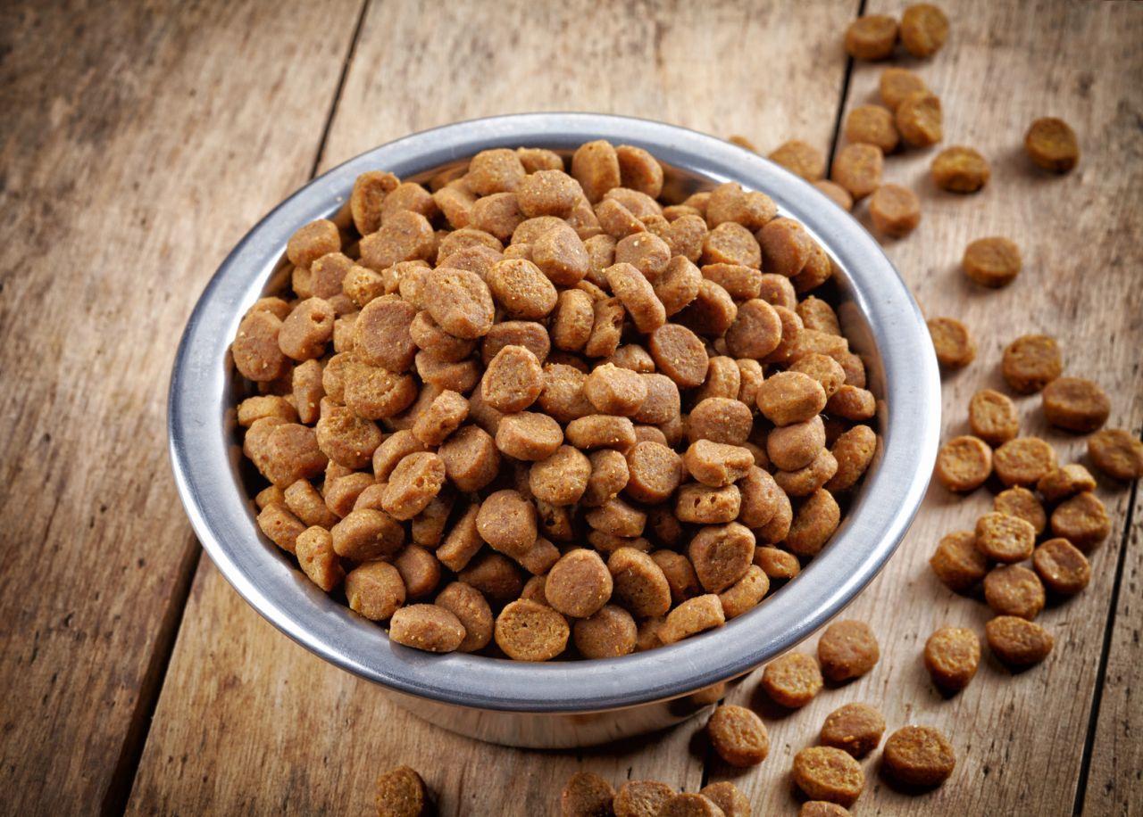 Фото на тему: Можно ли есть кошачий корм человеку?