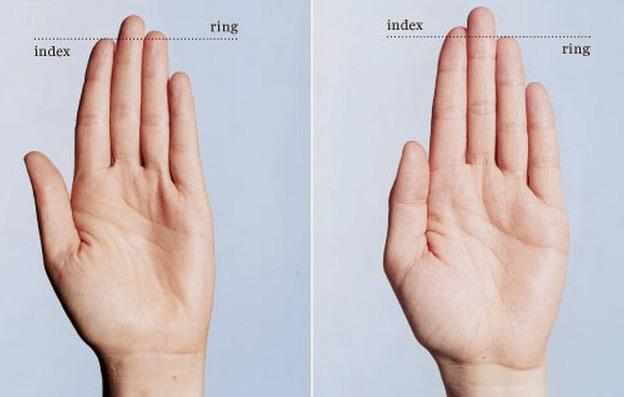 Фото на тему: Длина пальцев руки говорит о вашем характере
