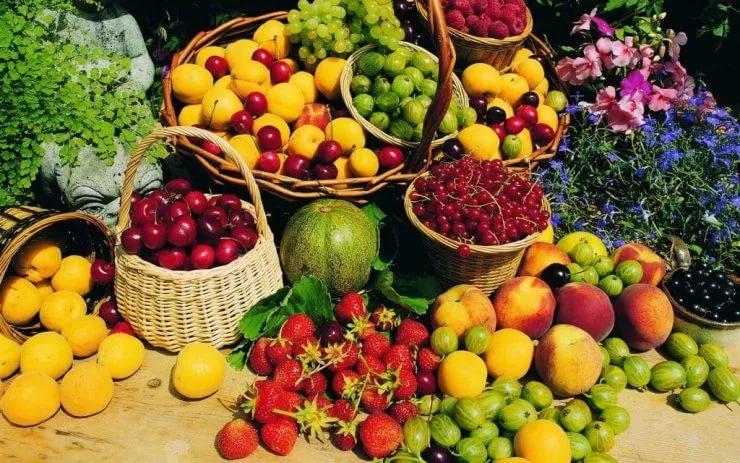 Фото на тему: Можно есть фрукты вечером?