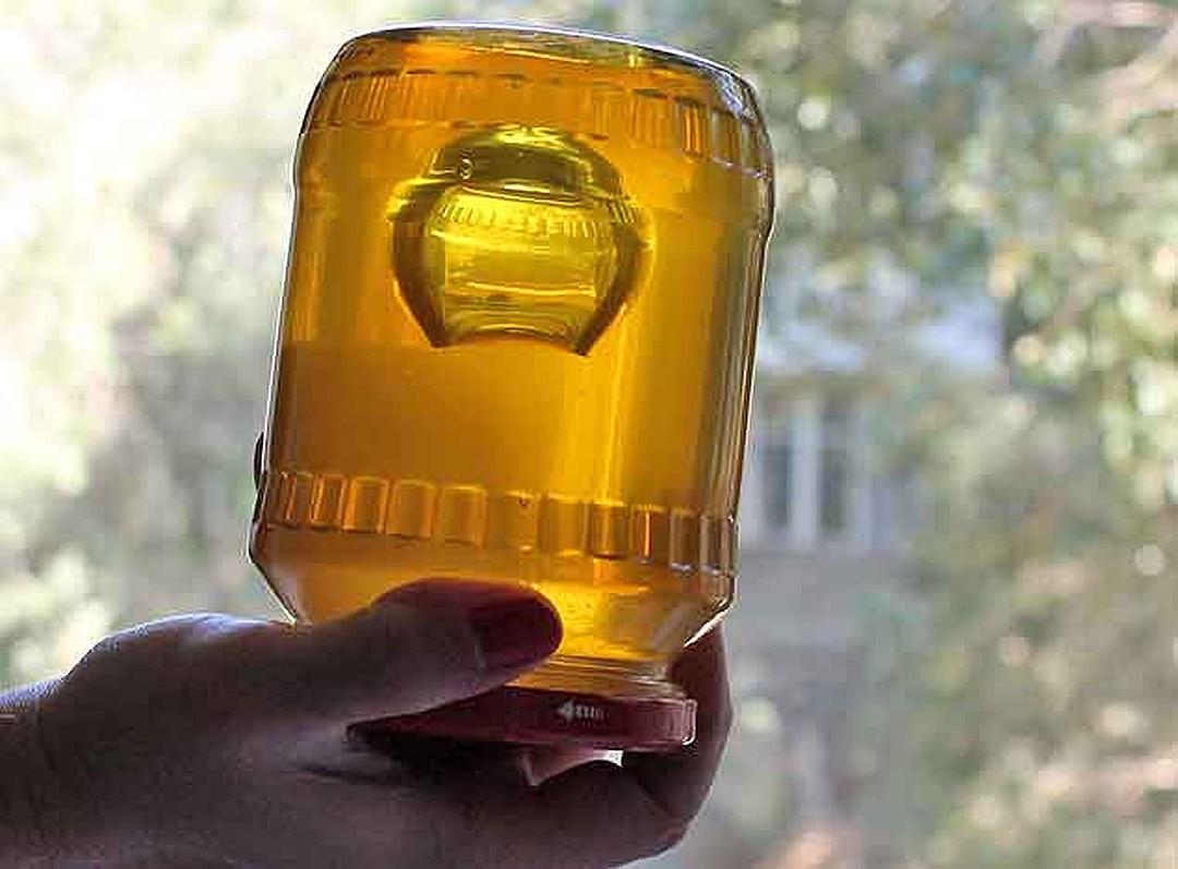 Картинка по теме: Может ли зимой мед быть жидким?