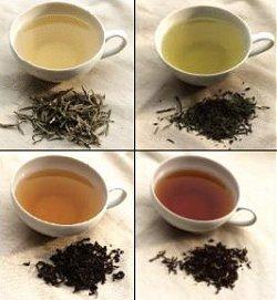 Фото - Какой чай лучше?