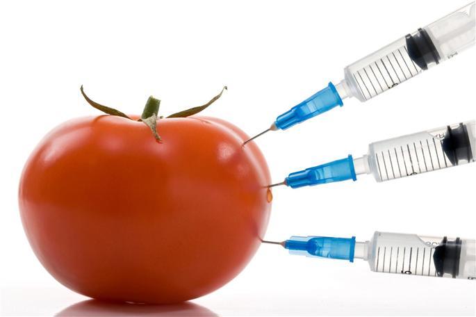 Фото - Вредные продукты: природные токсины