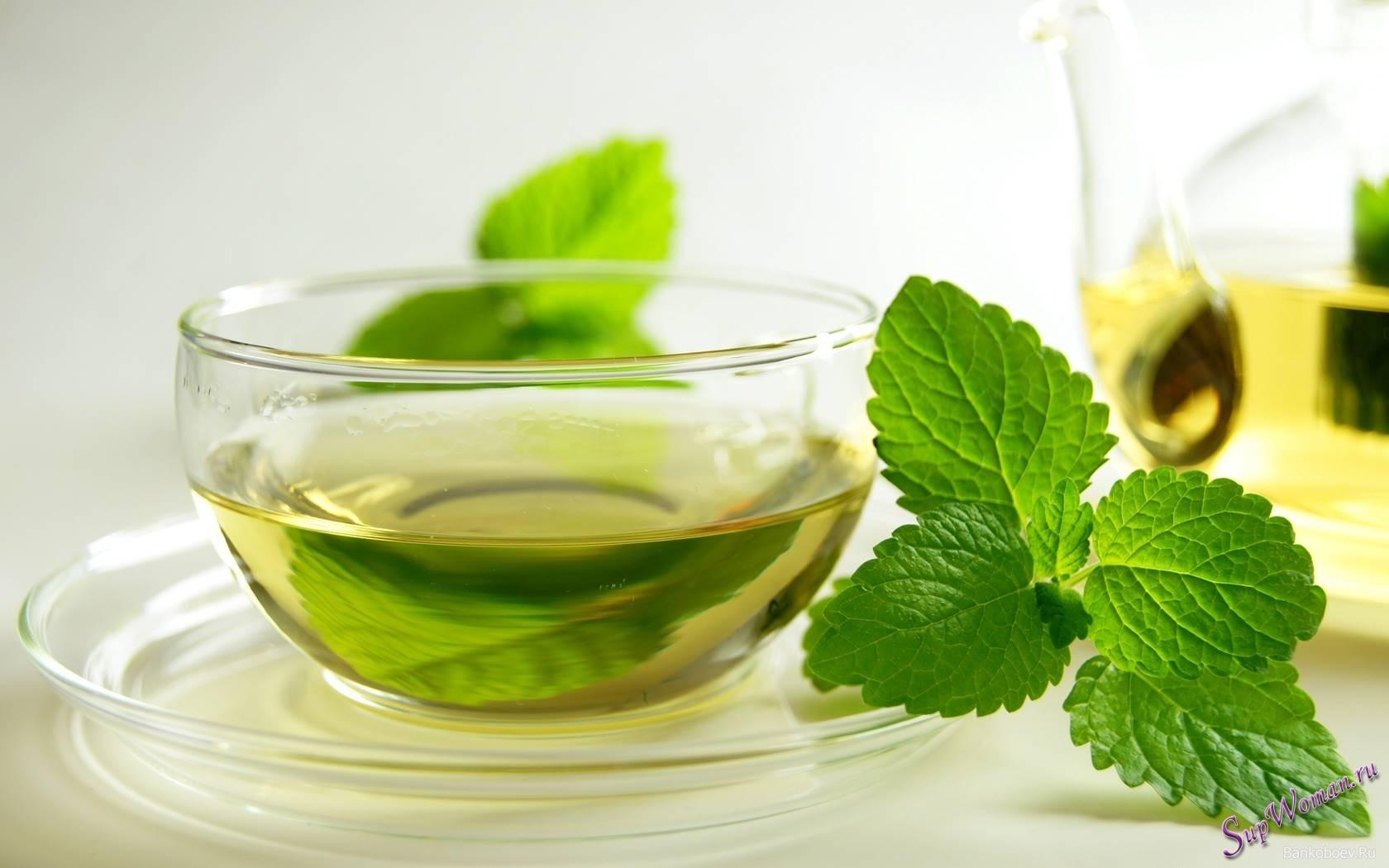 Фото - Мятный чай и его польза для организма