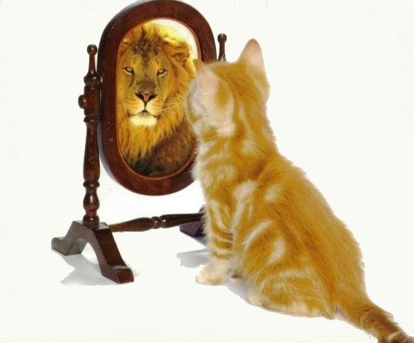 """Фото - Как приобрести уверенность в себе: психология собственного """"Я"""""""