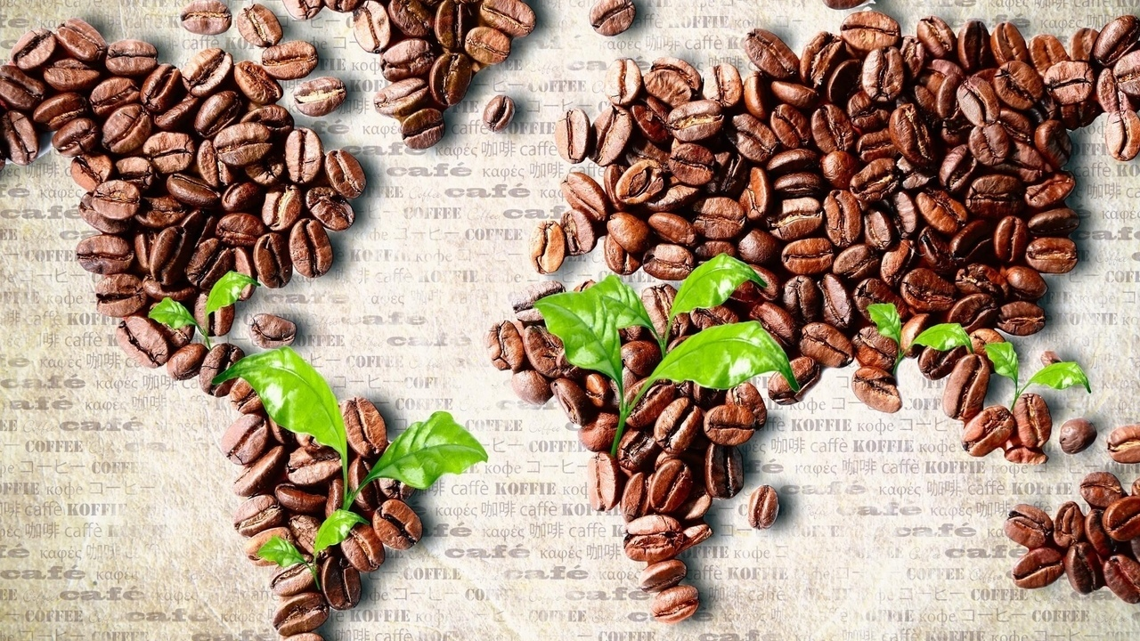 Фото обработка кофе