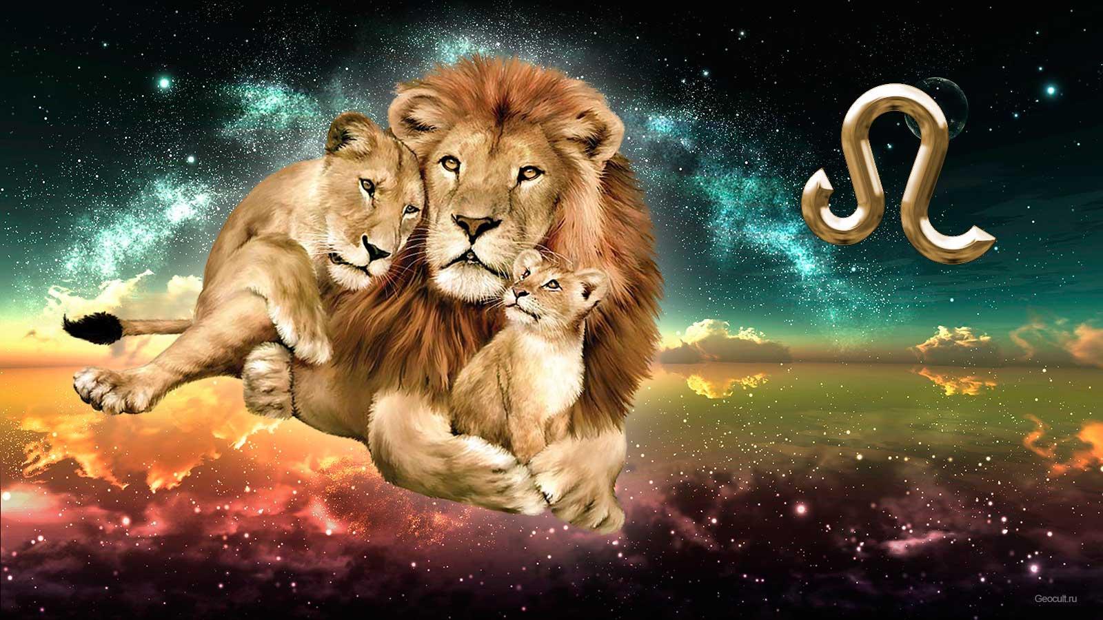 О сексе с мужчиной львом
