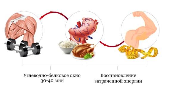 Блюда из кабачков  281 рецепт с фото Что приготовить из