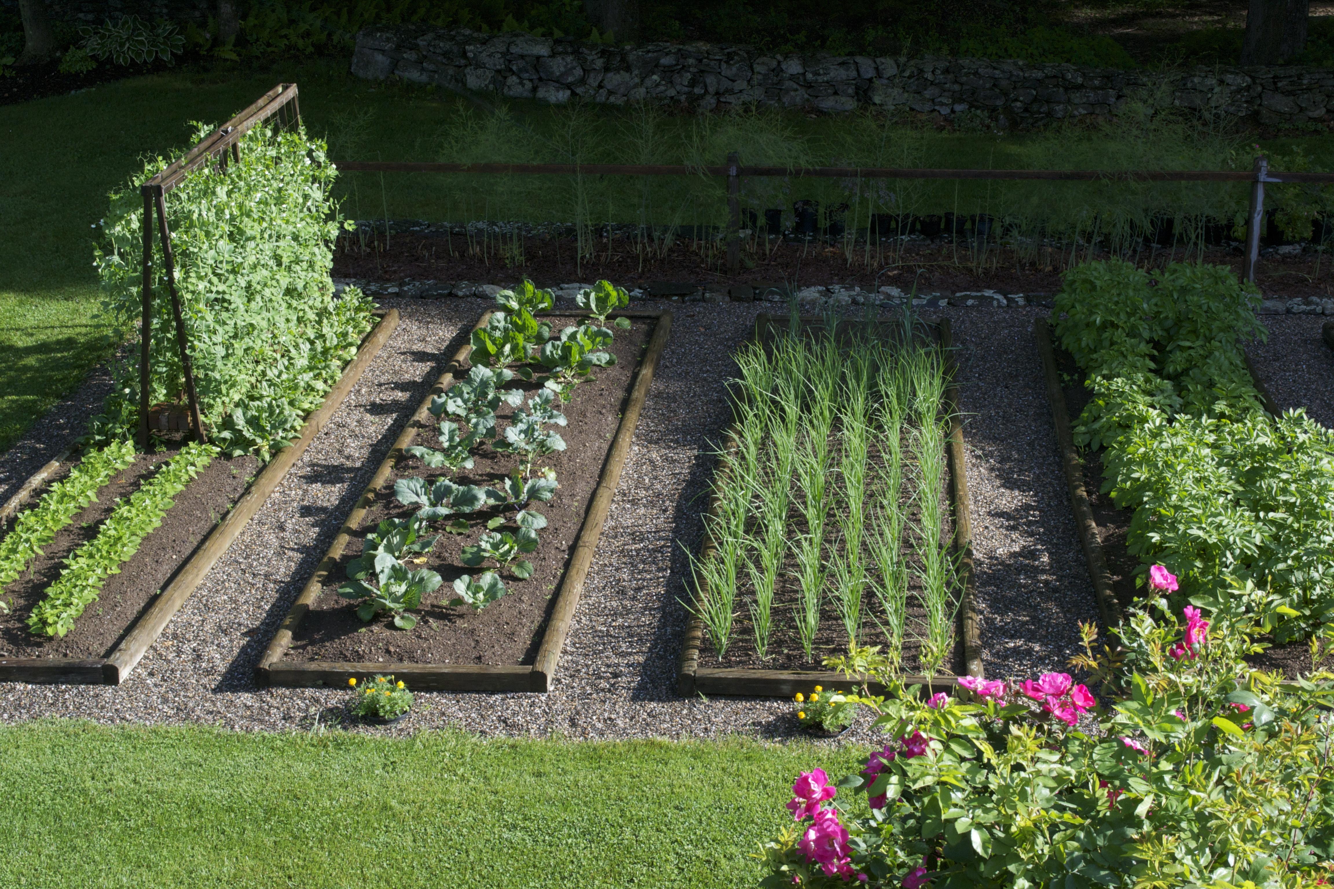 Картинка по теме: Как заставить себя работать на огороде?