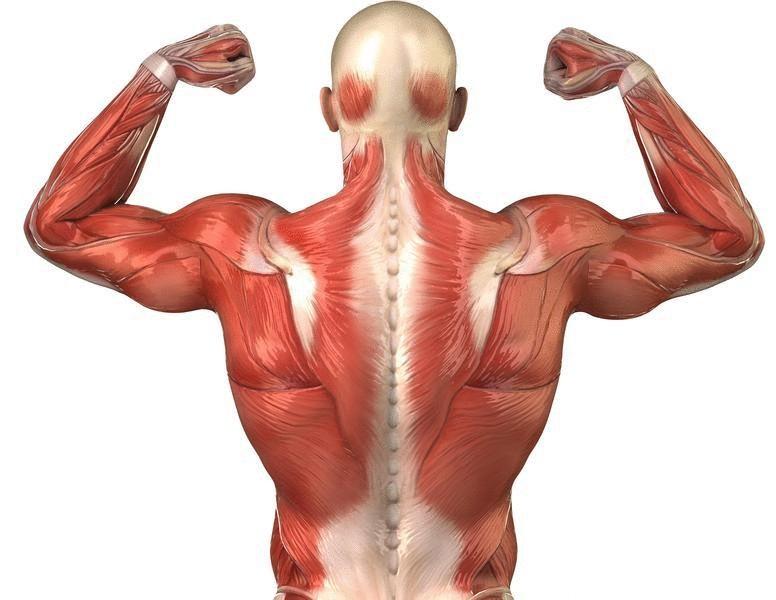 Последствия заболевания шейным остеохондрозом