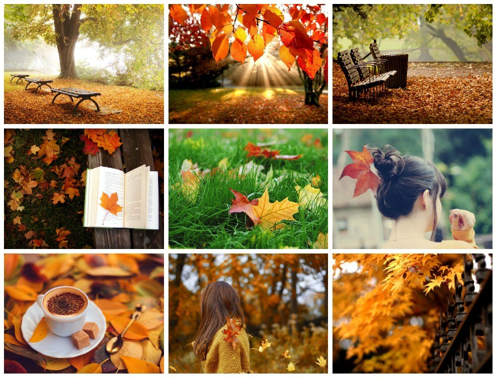 Как на фото сделать осень