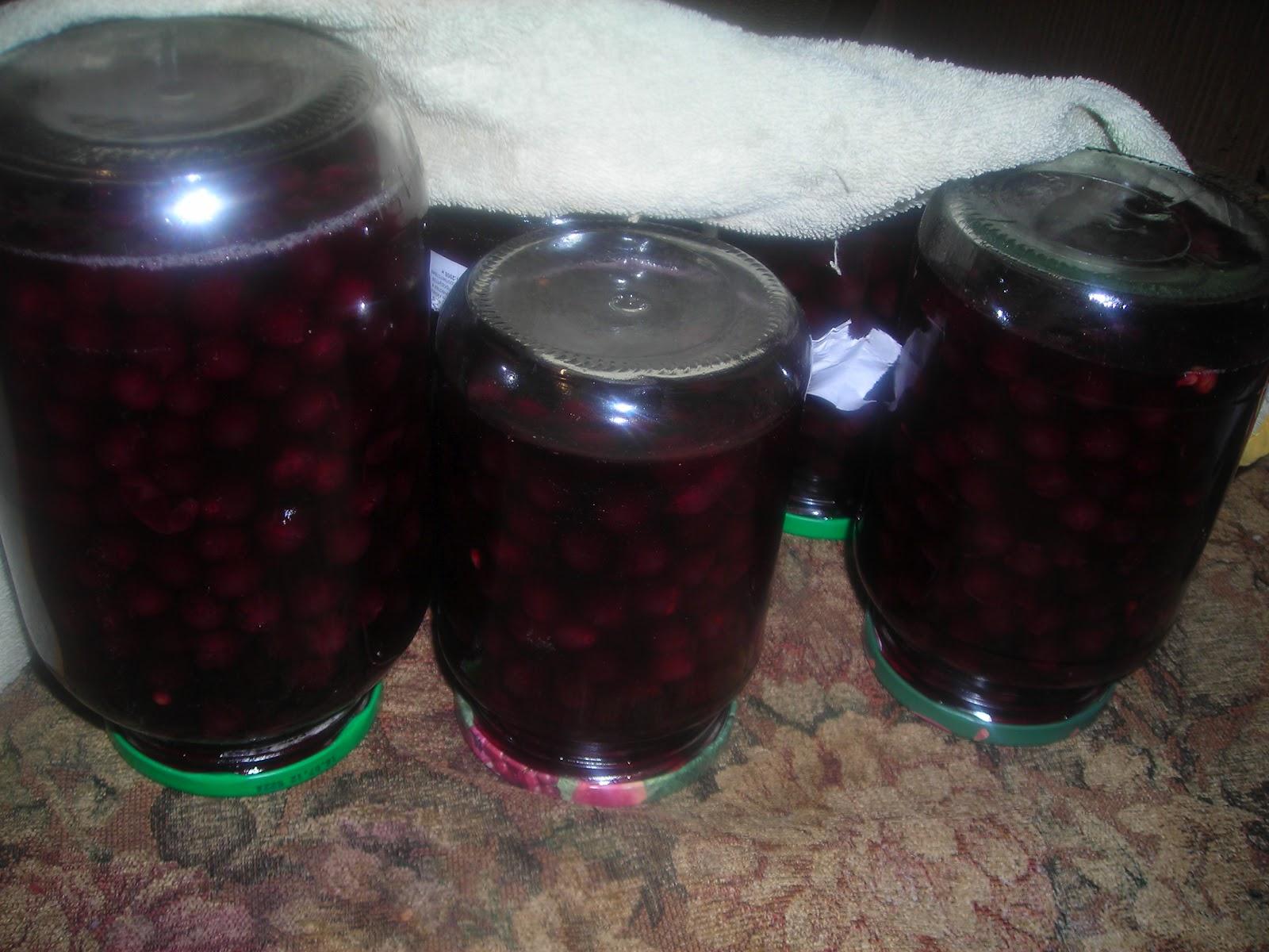 Что приготовить из винограда на зиму в